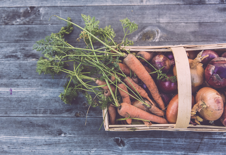 Sostenibilidad y salud, las claves que potenciarán la disrupción en el sector de la alimentación